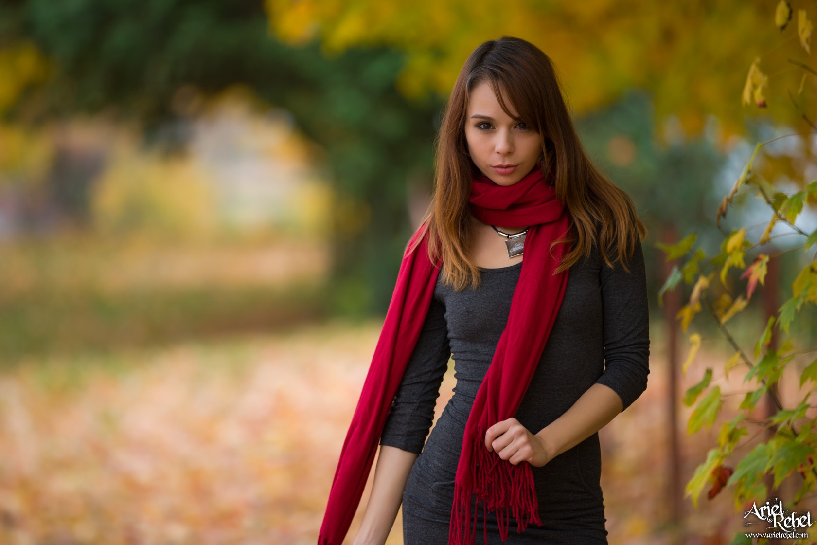 arielrebel_autumnleaves01