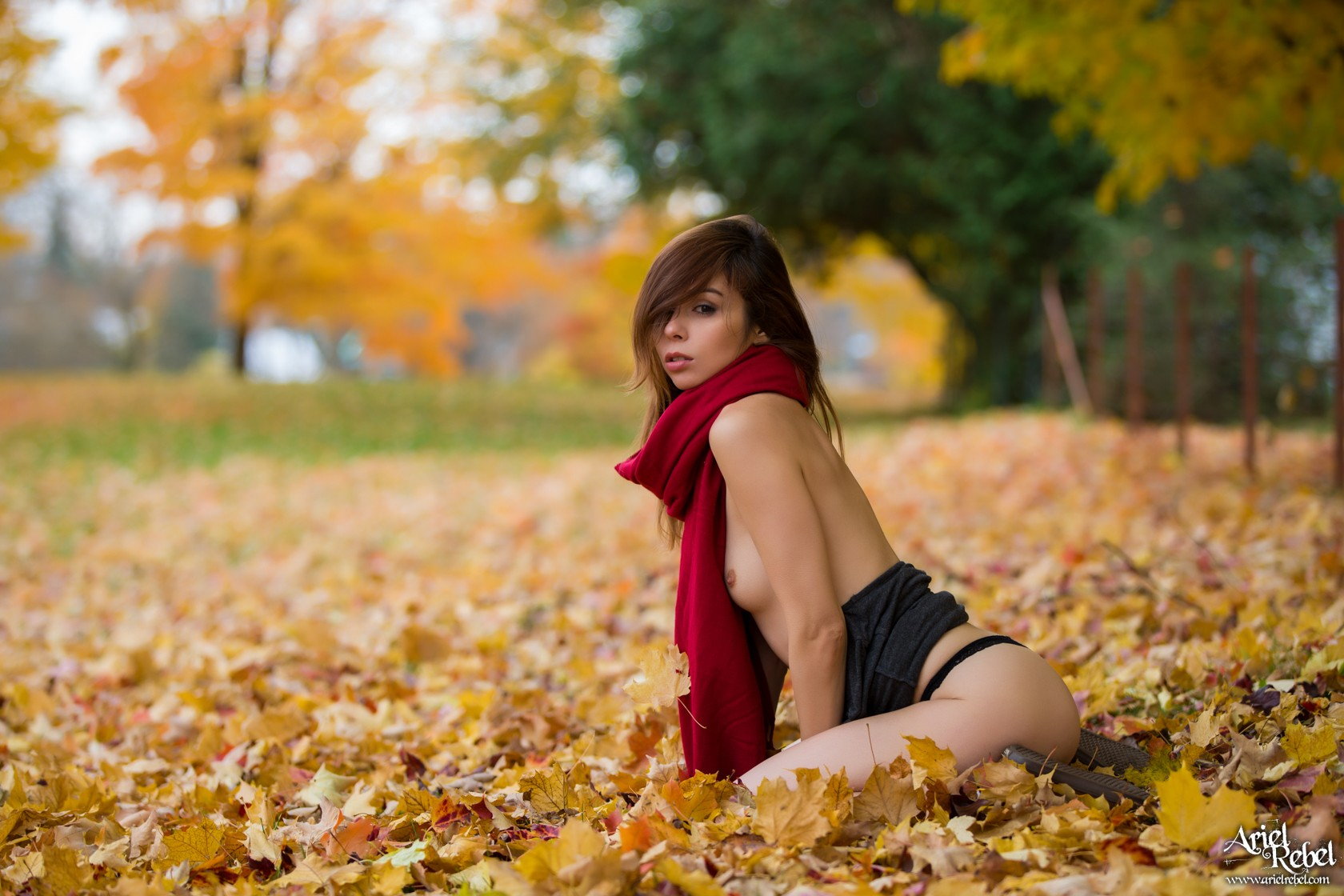 arielrebel_autumnleaves10