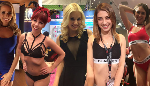 The ladies of AVN